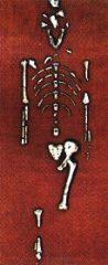 Lucy e gli altri ritrovamenti di Australopithecus